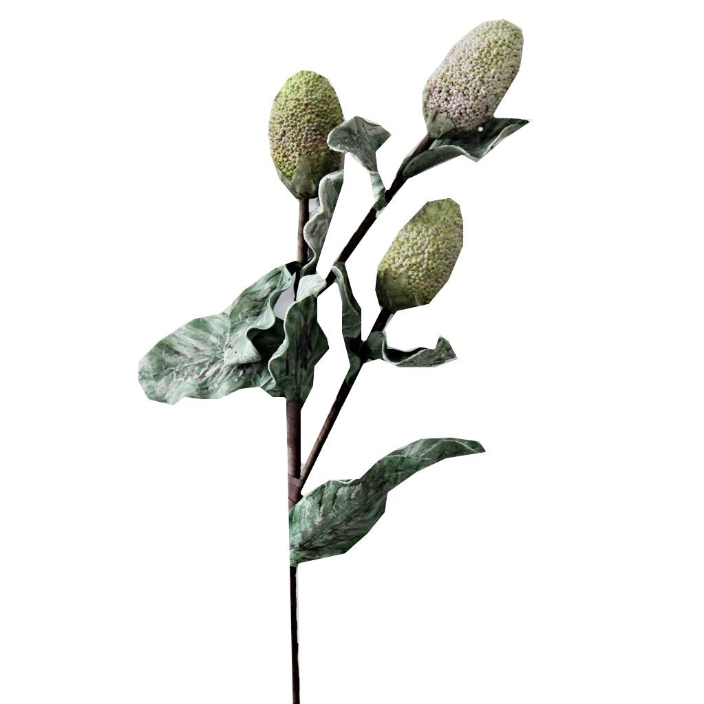 Zweig mit 3 Blütenbällen
